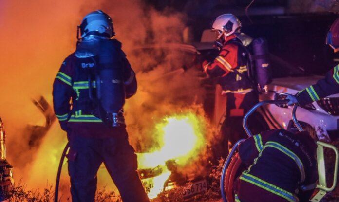 Arkivfoto fra Presse-fotos.dk