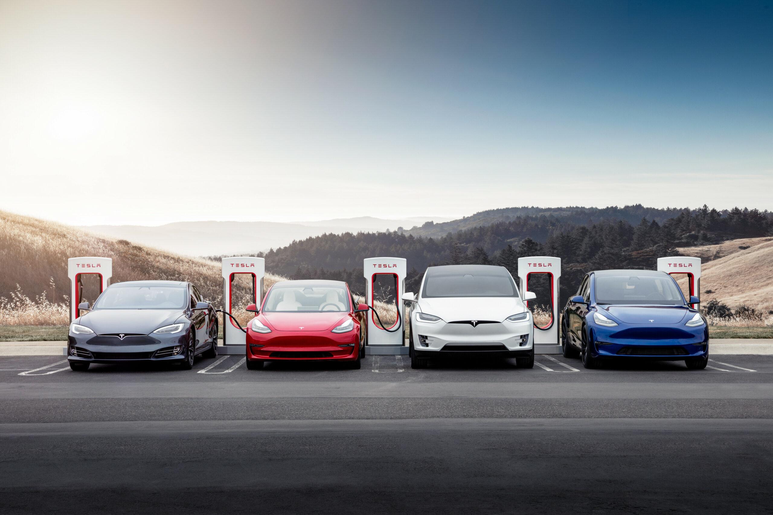 Chefen for det hele - Elon Musk - er én af årsagerne til at, bilmærket især på internettet får en hård medfart.